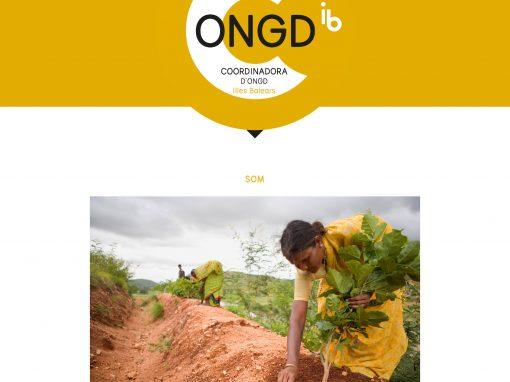 Coordinadora d'ONGD Illes Balears